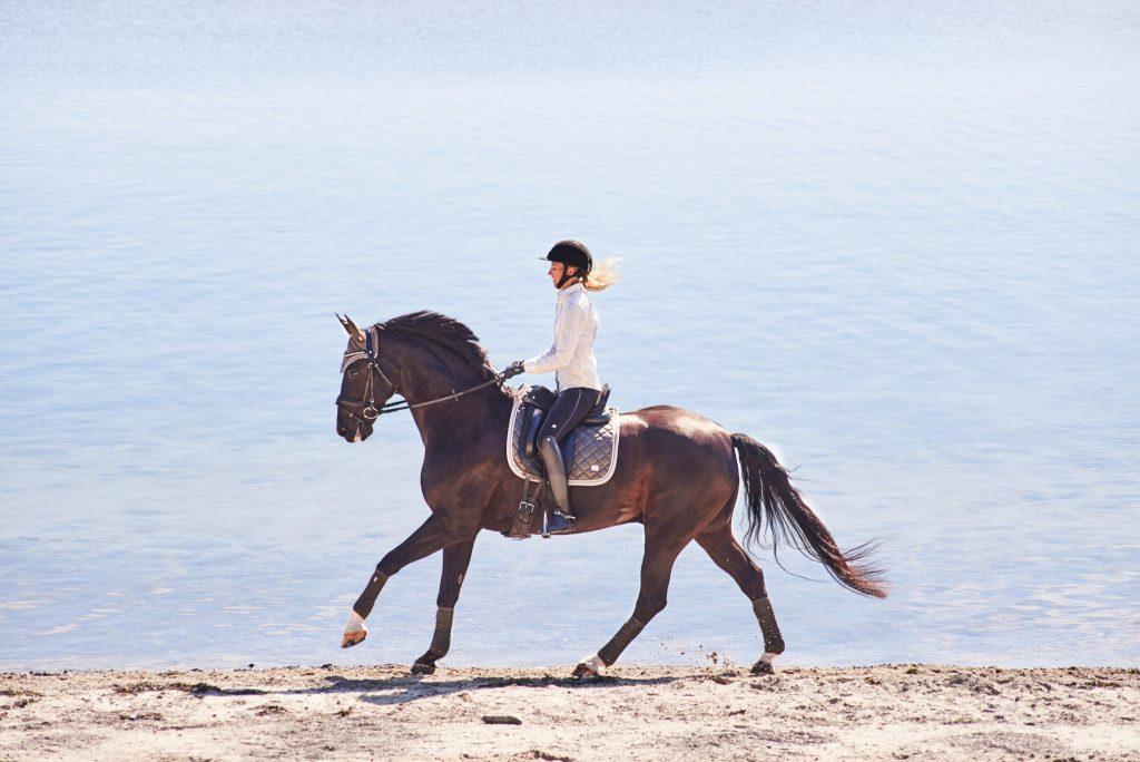Firmaprofilering Rider By Horse